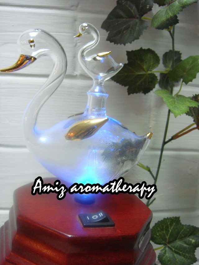 可愛大小鴨香薰超聲波噴霧加濕機| seto f 2 fancy ultrasonic aroma diffuser in duck design