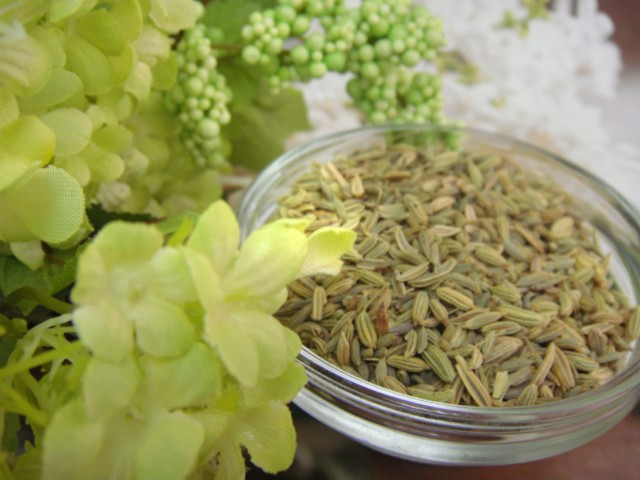 茴香精油|Fennel essential oil